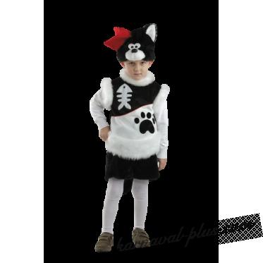 Кот Пират